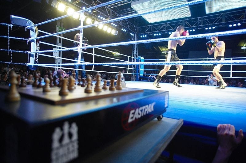 chess boxing wiki wcbo